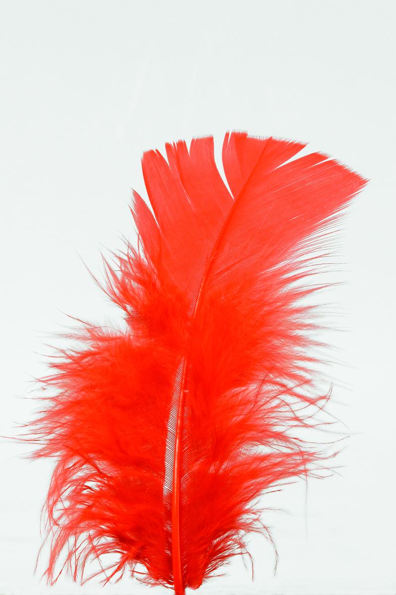 100 Stück Federn ROT, gefärbt ca.12 cm,Hühnerfedern,Basteln für Kostüme